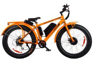 bigcat_orange